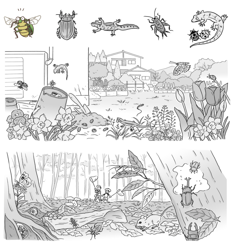 昆虫イラスト